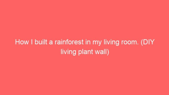 How I built a rainforest in my living room. (DIY living plant wall)