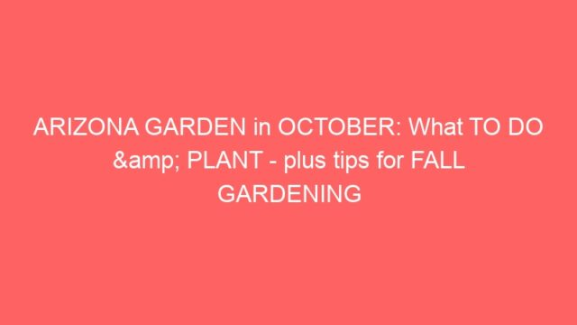 ARIZONA GARDEN in OCTOBER: What TO DO & PLANT – plus tips for FALL GARDENING