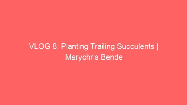 VLOG 8: Planting Trailing Succulents | Marychris Bende