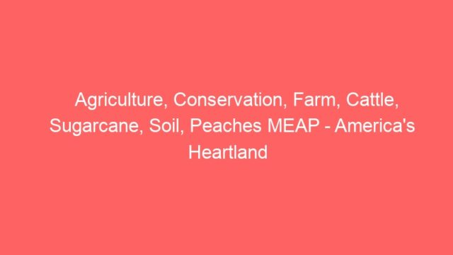 Agriculture, Conservation, Farm, Cattle, Sugarcane, Soil, Peaches MEAP – America's Heartland