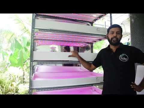 Vertical hydroponic system | Described in Malayalam