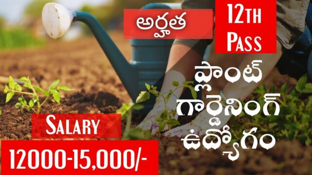 Gardening jobs 2020 Latest private jobs 12th pass Apply form Vacancies job opening search employment