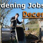 Gardening Jobs For December   Prepare for Next Season