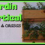 👨🏼🌾 Hacemos un jardín vertical de MADERA con plantas SUCULENTAS 🌵