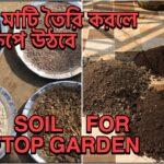 Soil preparation for vegetable garden | soil preparation for gardening | টবের মাটি তৈরি |