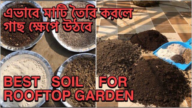 Soil preparation for vegetable garden   soil preparation for gardening   টবের মাটি তৈরি  