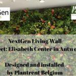 NextGen Living Walls Plantrent