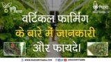 Vertical Farming | Agriculture | वर्टिकल फार्मिंग क्या है | कैसे करें शुरुआत | क्या हैं इसके फायदे?