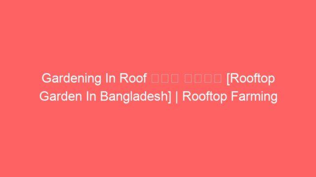 Gardening In Roof ছাদ কৃষি [Rooftop Garden In Bangladesh] | Rooftop Farming