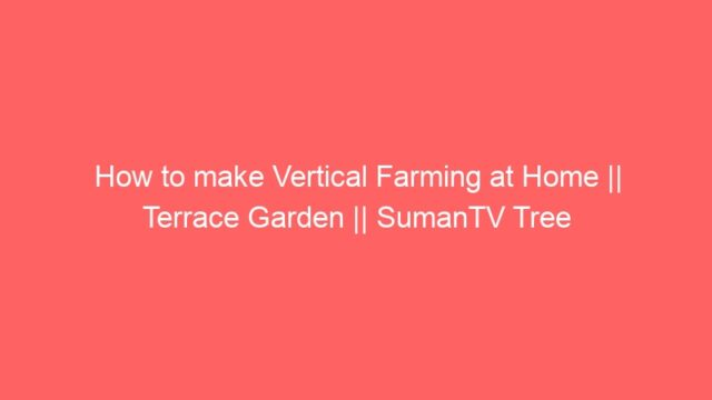 How to make Vertical Farming at Home || Terrace Garden || SumanTV Tree