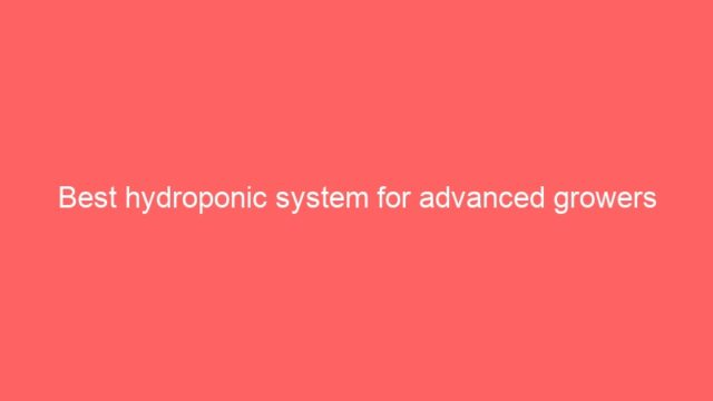 Best hydroponic system for advanced growers