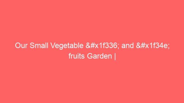 Our Small Vegetable 🌶 and 🍎 fruits Garden | അടുക്കളത്തോട്ടം| Vegetable Garden| Adukkalathottam