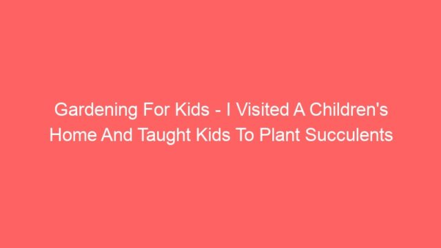 Gardening For Kids – I Visited A Children's Home And Taught Kids To Plant Succulents