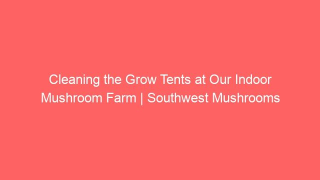 Cleaning the Grow Tents at Our Indoor Mushroom Farm | Southwest Mushrooms