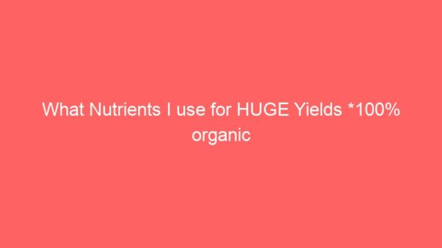 What Nutrients I use for HUGE Yields *100% organic