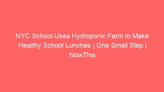NYC School Uses Hydroponic Farm to Make Healthy School Lunches | One Small Step | NowThis