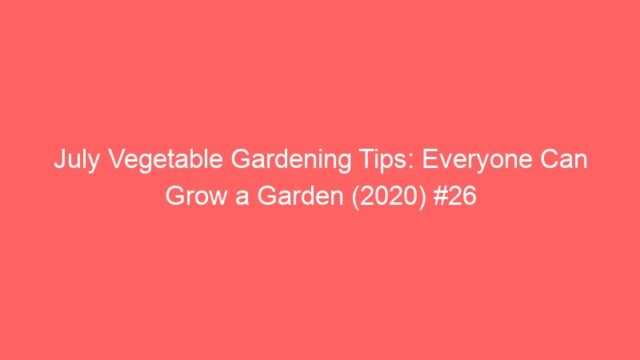 July Vegetable Gardening Tips: Everyone Can Grow a Garden (2020) #26