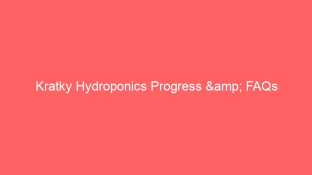 Kratky Hydroponics Progress & FAQs