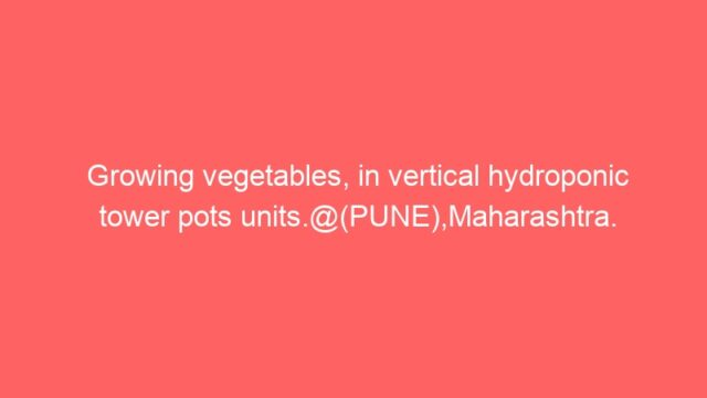 Growing vegetables, in vertical hydroponic tower pots units.@(PUNE),Maharashtra.