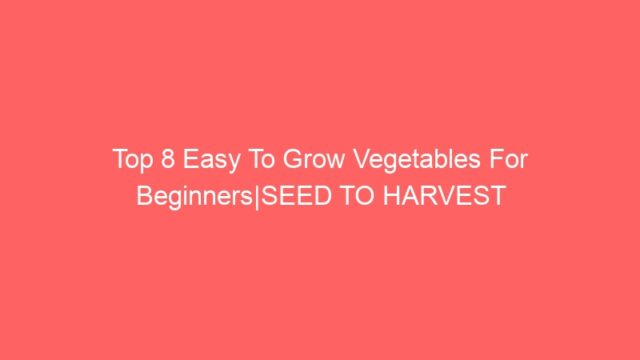 Top 8 Easy To Grow Vegetables For Beginners|SEED TO HARVEST