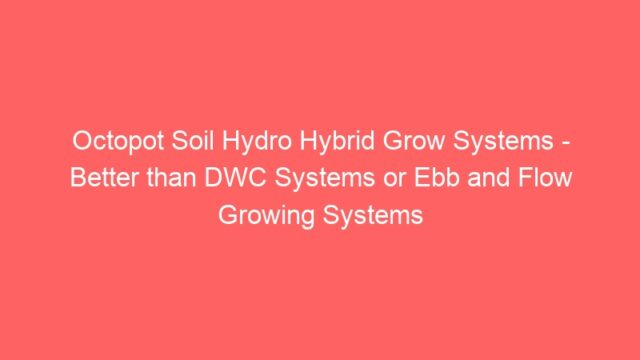 Octopot Soil Hydro Hybrid Grow Systems – Better than DWC Systems or Ebb and Flow Growing Systems