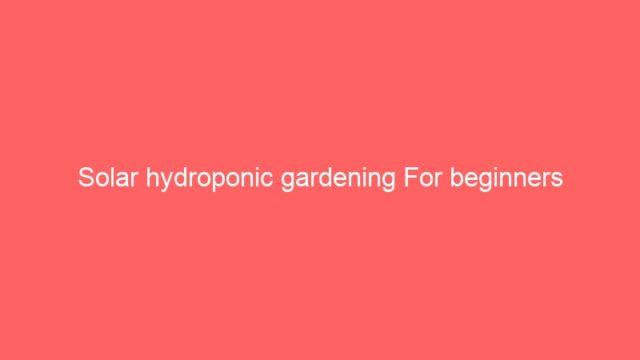 Solar hydroponic gardening For beginners