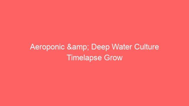 Aeroponic & Deep Water Culture Timelapse Grow