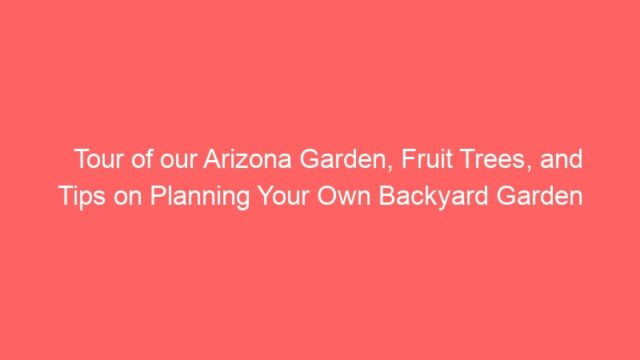 Tour of our Arizona Garden, Fruit Trees, and Tips on Planning Your Own Backyard Garden