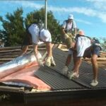 """Steel Roof Installation """"The way it should be done"""""""