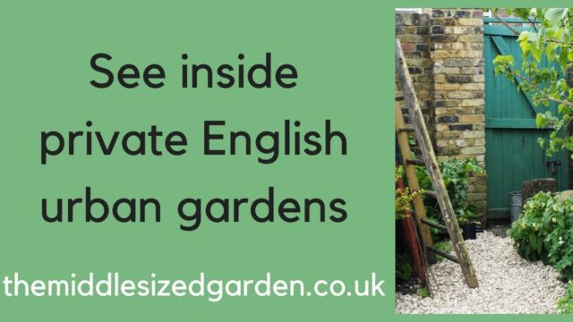 Visit private urban gardens for ideas and inspiration