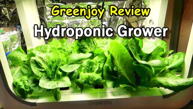 Hydroponic Growing System from Greenjoy: Product Review