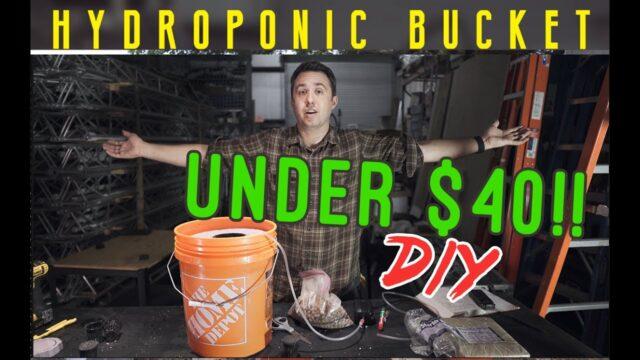 Hydroponics Bucket Grower for UNDER $40! DIY Build. DWC Deep Water Culture hydro grow station.