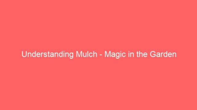 Understanding Mulch – Magic in the Garden