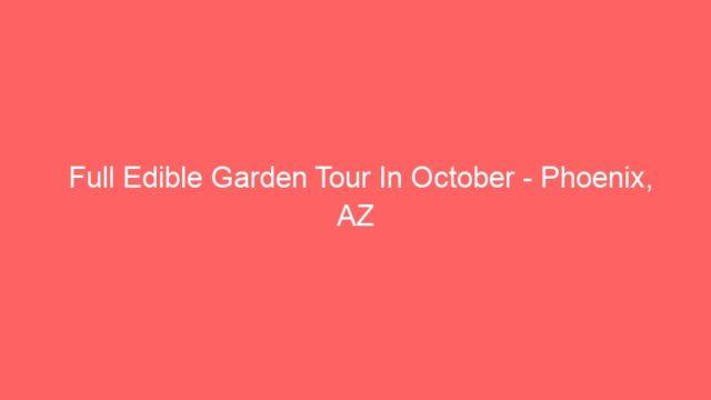 Full Edible Garden Tour In October – Phoenix, AZ