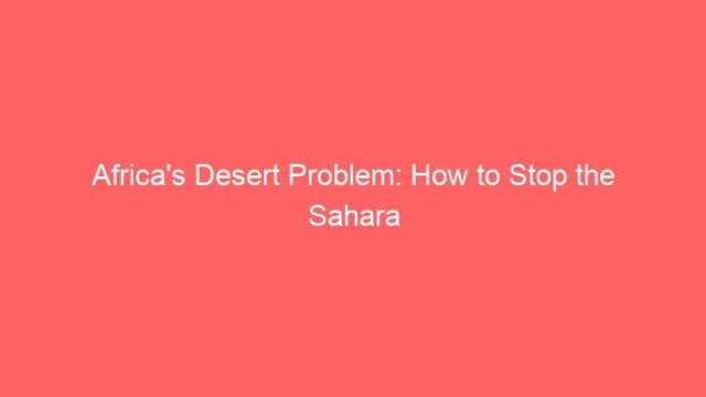 Africa's Desert Problem: How to Stop the Sahara