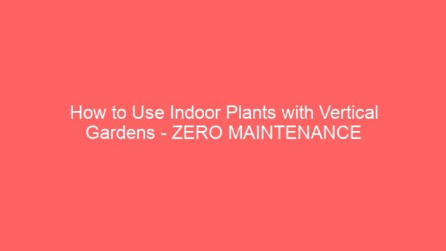 How to Use Indoor Plants with Vertical Gardens – ZERO MAINTENANCE