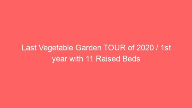 Last Vegetable Garden TOUR of 2020 / 1st year with 11 Raised Beds