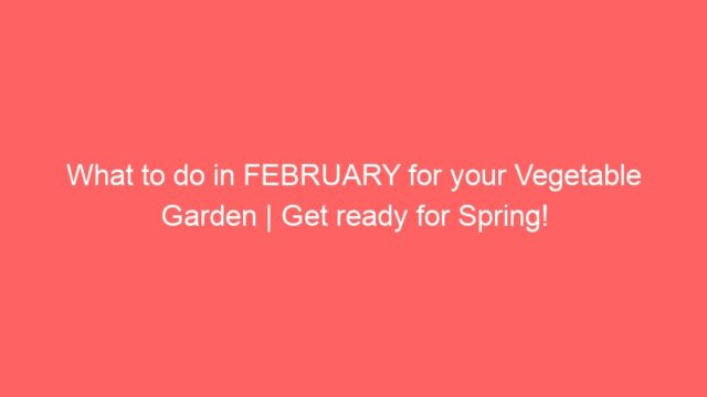 What to do in FEBRUARY for your Vegetable Garden | Get ready for Spring!