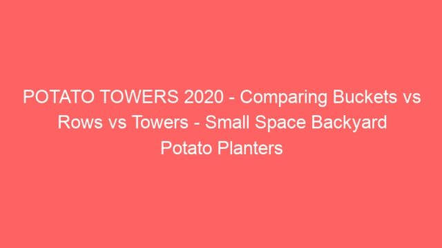 POTATO TOWERS 2020 – Comparing Buckets vs Rows vs Towers – Small Space Backyard Potato Planters