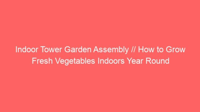 Indoor Tower Garden Assembly // How to Grow Fresh Vegetables Indoors Year Round