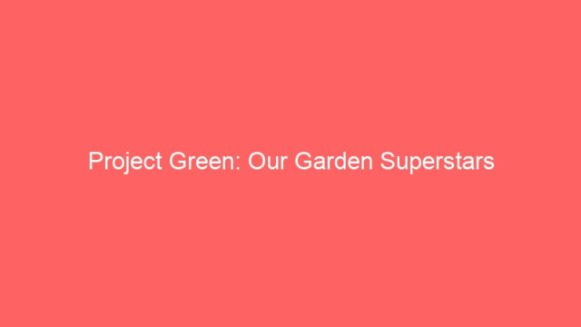 Project Green: Our Garden Superstars