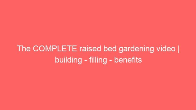 The COMPLETE raised bed gardening video | building – filling – benefits