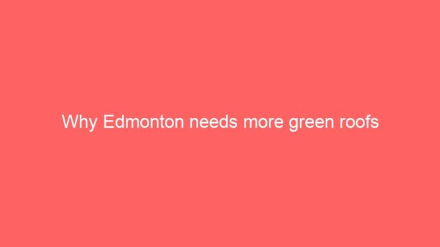 Why Edmonton needs more green roofs