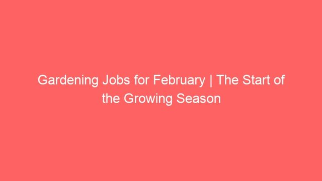 Gardening Jobs for February | The Start of the Growing Season