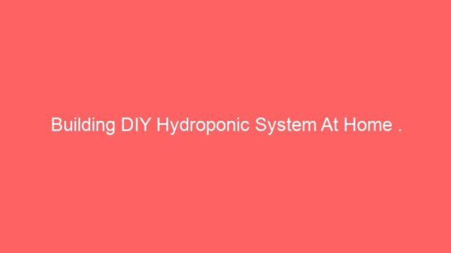 Building DIY Hydroponic System At Home .