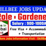 JOB IN UAE / Role: Gardener / Company: Master scapes Garden Contracting LLC / Salary: AED 1000