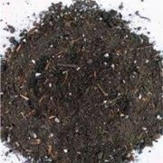 loam with perlite