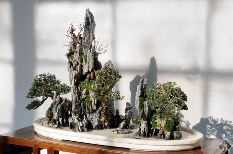 rock bonsai