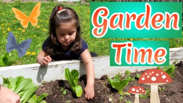 Gardening For Preschoolers | Maya plants flowers and vegetables | planting season
