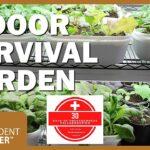 How to Grow an Indoor Survival Garden